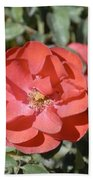 Red Flower II Beach Towel