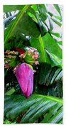 Red Flower Of A Banana Against Green Leaves Beach Towel