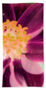 Red Flower - Photopower 256 Beach Towel