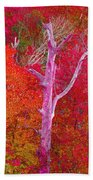 Pink Tree In A  Red Forest Beach Towel