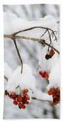 Red Fruit With Snow Beach Towel