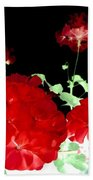 Red Geraniums Beach Towel by Will Borden