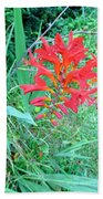 Red Gift Beach Towel