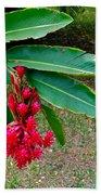 Red Ginger Chandelier Beach Towel