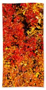 Red-golden Alpine Shrubs Beach Towel