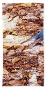 Red Head Beach Towel
