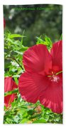Red Hollyhocks Beach Towel