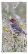Red House Finch In Flowers Beach Towel