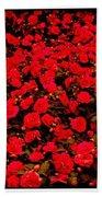 Red Impatiens Flowers Beach Towel