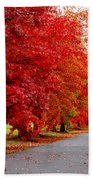 Red Leaf Road Beach Towel