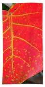 Red Leaf With Yellow Veins Beach Towel