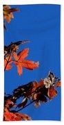 Red Leaves Blue Sky Beach Towel