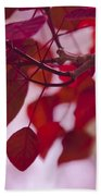 Red Leaves - Euphorbia Cotinifolia - Tropical Smoke Bush Beach Towel