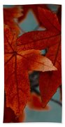 Red Leaves On The Branches In The Autumn Forest. Beach Towel
