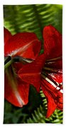 Red Lilies For Spring Beach Towel