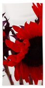 Red Lullaby Beach Towel