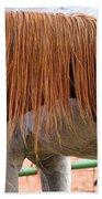 Red Mane Beach Towel