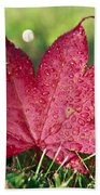 Red Maple Leaf And Dew Beach Towel