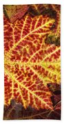 Red Maple Leaf Beach Towel