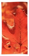 Peak Color Maple Leaves Beach Towel