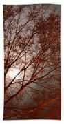 Red Oak At Sunrise Beach Towel