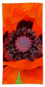 Red Oriental Poppy Beach Towel