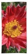 Red Pasque Flower Beach Towel