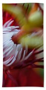 Red Passion Flower Stamens Beach Towel