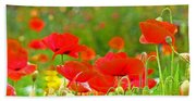 Red Poppy Flowers Meadow Art Prints Beach Towel