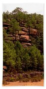 Red Rock Green Forest No3 Beach Towel