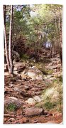 Red Rock Pine Forest Beach Towel