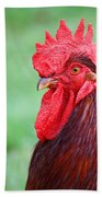 Red Rooster Portrait Beach Towel