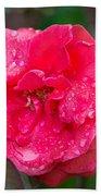Savannah Ga Red Rose After A Rain Beach Towel