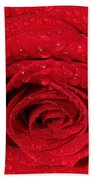 Red Rose And Water Drops Beach Towel