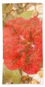 Red Rose At Noon Beach Towel