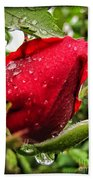 Red Rose Bud With Water Drops Beach Towel
