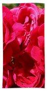 Red Rose Garden Art Prints Roses Beach Towel