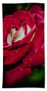 Red Rose With Water Drops Beach Towel