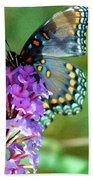 Red Spotted Purple Butterfly Photopainting Beach Towel