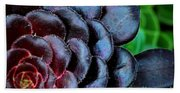 Red Succulents Beach Towel