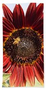 Red Sunflower And Bee Beach Towel by Kerri Mortenson