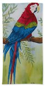 Red Tail Macaw Too Beach Towel