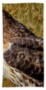 Red Tailed Hawk Close Up Beach Towel