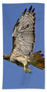 Red-tailed Hawk Takeoff Beach Towel