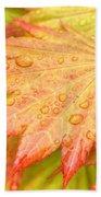 Red Tip Leaf Beach Towel