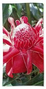 Red Torch Ginger Beach Towel