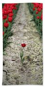 Red Tulips Beach Towel by Jim Corwin