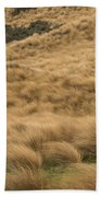 Red Tussock Preserve Beach Towel