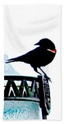 Red Wing Posed Beach Towel