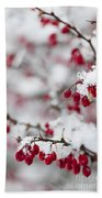 Red Winter Berries Under Snow Beach Sheet